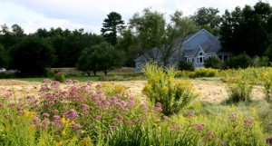 NH Audubon Massabesic Education Center