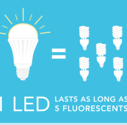 LED bulb outlives 5 fluorescent bulbs