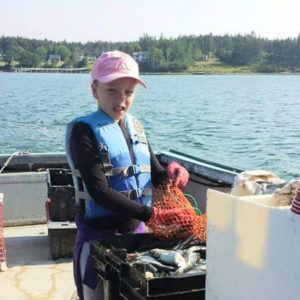 "Solar Brings ""Old School to New School"" for Family Run Lobster Fishing Business"