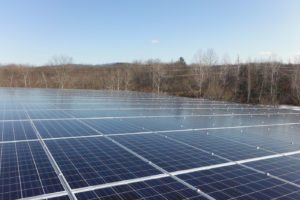 tree-free-greetings-solar-keene-nh